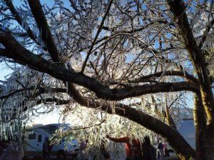 Vídeo – Balanço do frio em SC e o aumento da temperatura na semana