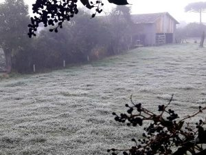 Nota Meteorológica – Temperatura abaixo de zero grau do Meio Oeste ao Planalto de SC!